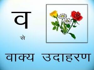 vakya udaaharan - vakya - Learn Hindi Grammar
